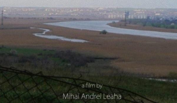 Afiș - Valea plângerii