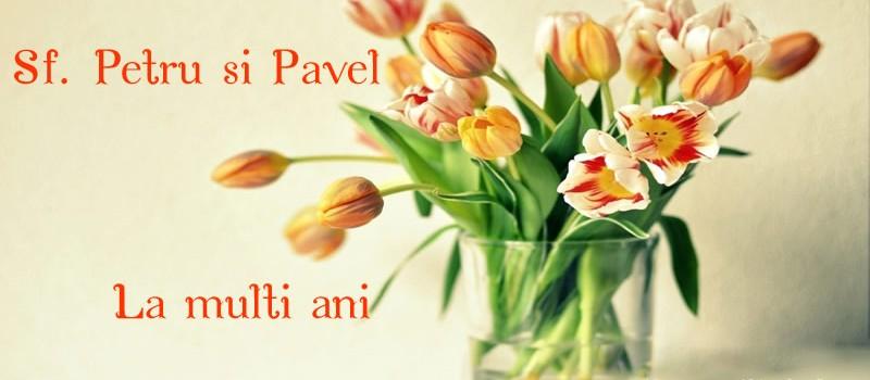petrupavel-3605