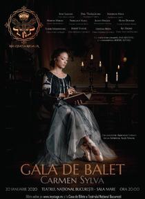 small_afis_bun_balet